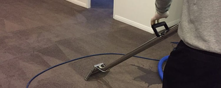 Expert End of Lease Carpet Cleaning Mosman Park